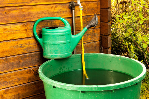 How to water your garden using as little water as possible
