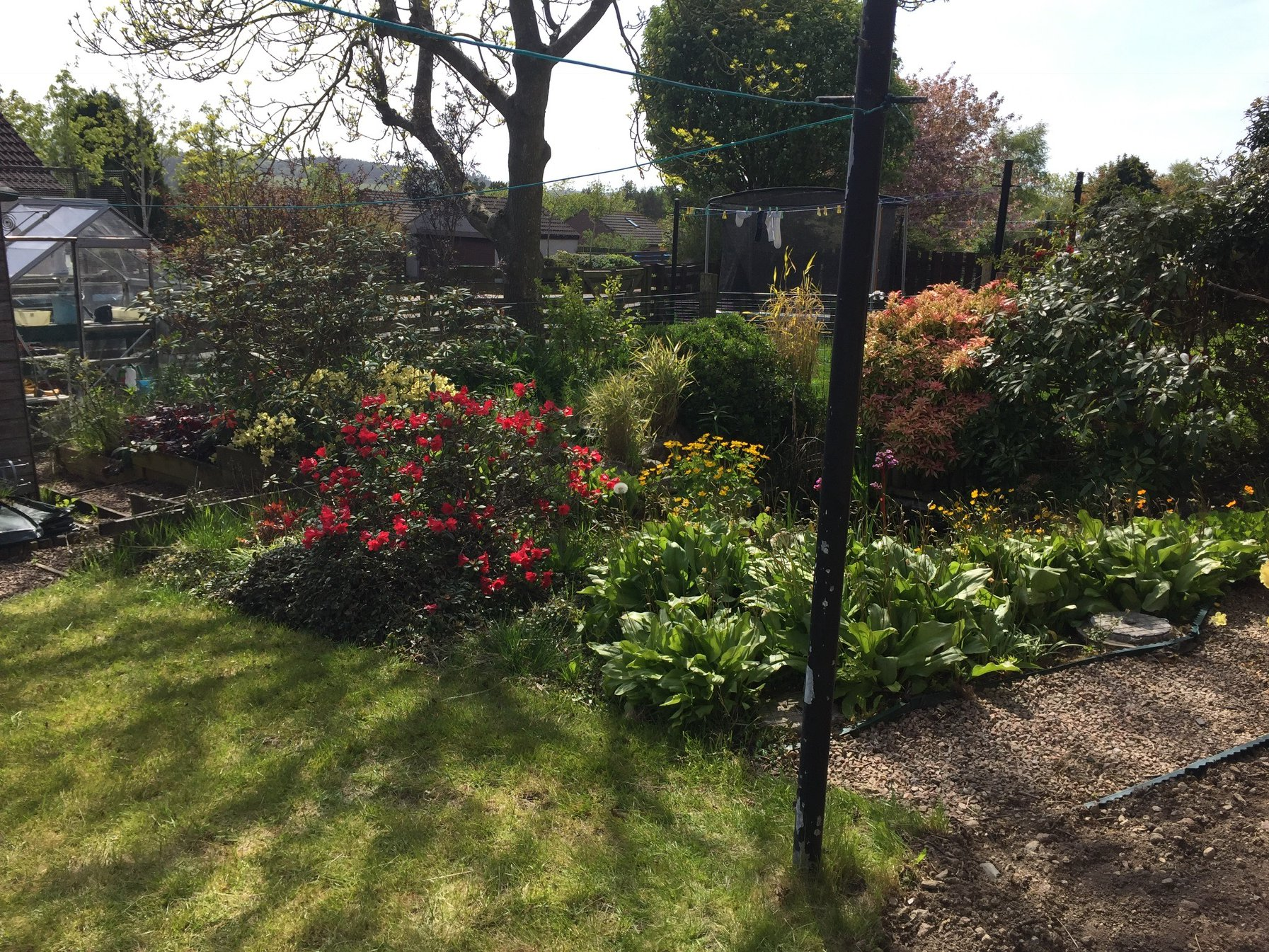 Before pic - Garthdee garden project, Aberdeen